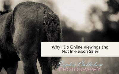 Why I Do Online Viewings and Not In-Person Sales