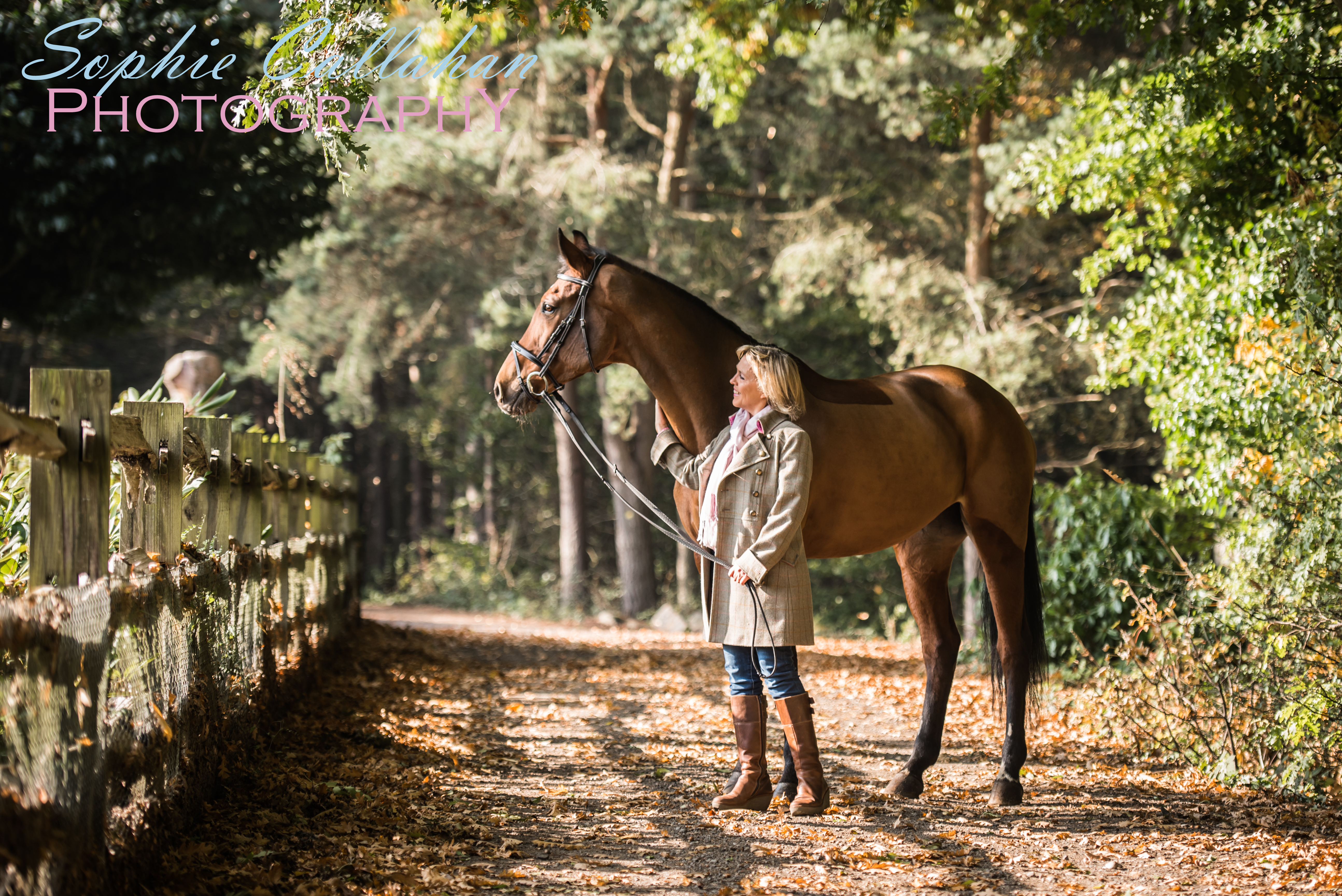 How To Make A Autumn Winter Equine Photoshoot Work Sophie Callahan Blog