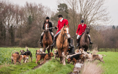 Essex Farmers & Union Hunt – New Year's Day 2016, Maldon