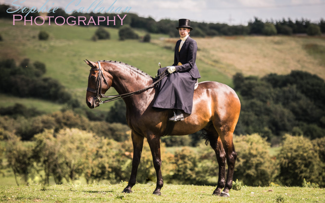 What Is Included in The Cost of a Basic Equine Photoshoot?