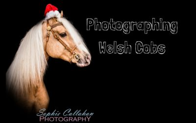PHOTOGRAPHING WELSH SECTION DS – Weekly Vlog #21, Sophie Callahan Photography