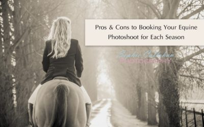 Pros & Cons to Booking Your Equine Photoshoot for Each Season