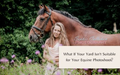 What If Your Yard Isn't Suitable for Your Equine Photoshoot?