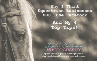 Why I Think Equestrian Businesses MUST Use Facebook – And My 4 Top Tips!
