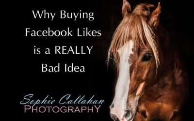 Why Buying Facebook Likes is a REALLY Bad Idea