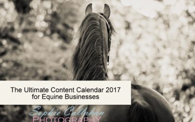 The Ultimate Content Calendar 2017 for Equine Businesses