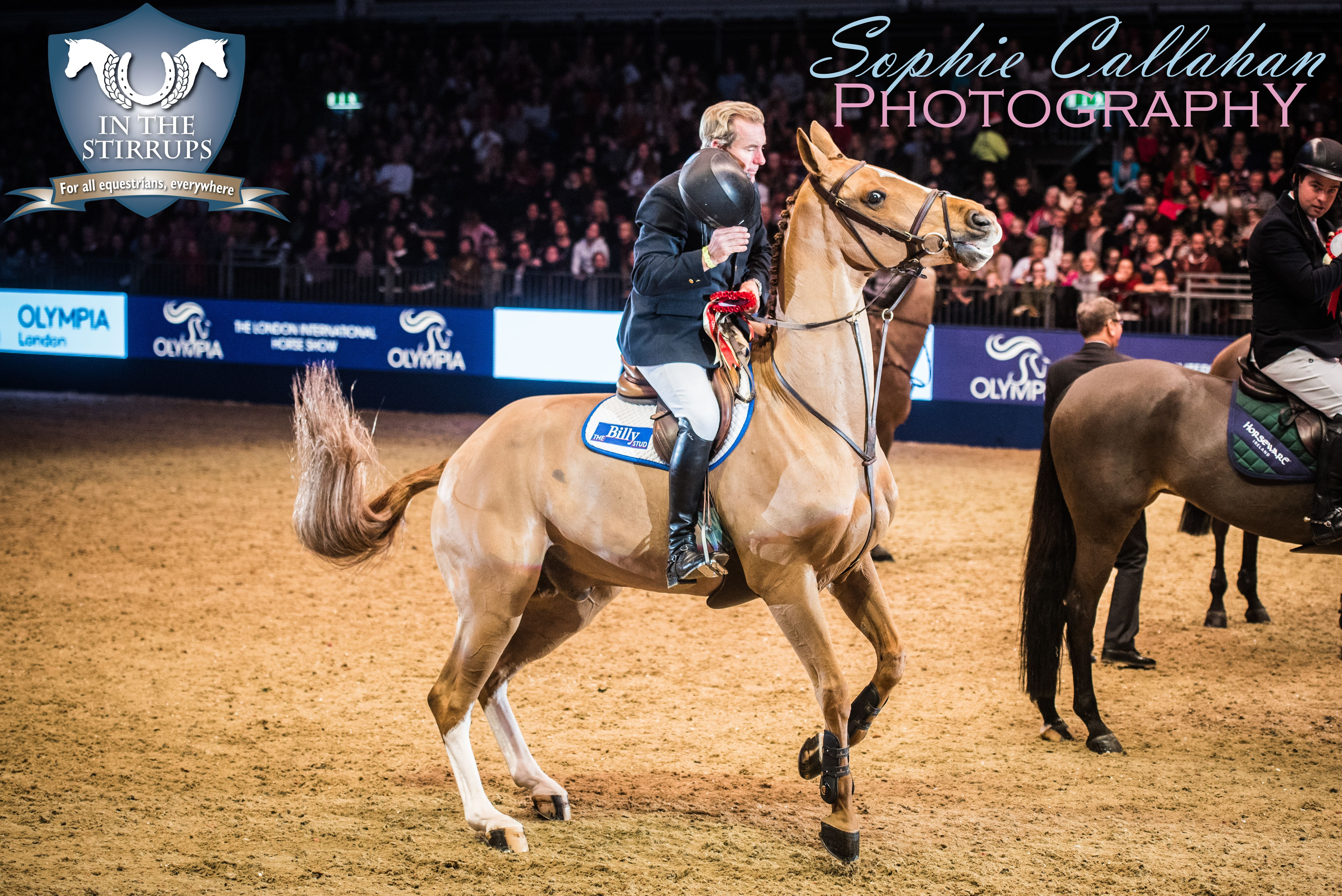 Olympia 2016, by Specialist UK Equine Portrait Photographer, Essex I equine photography equine blogger