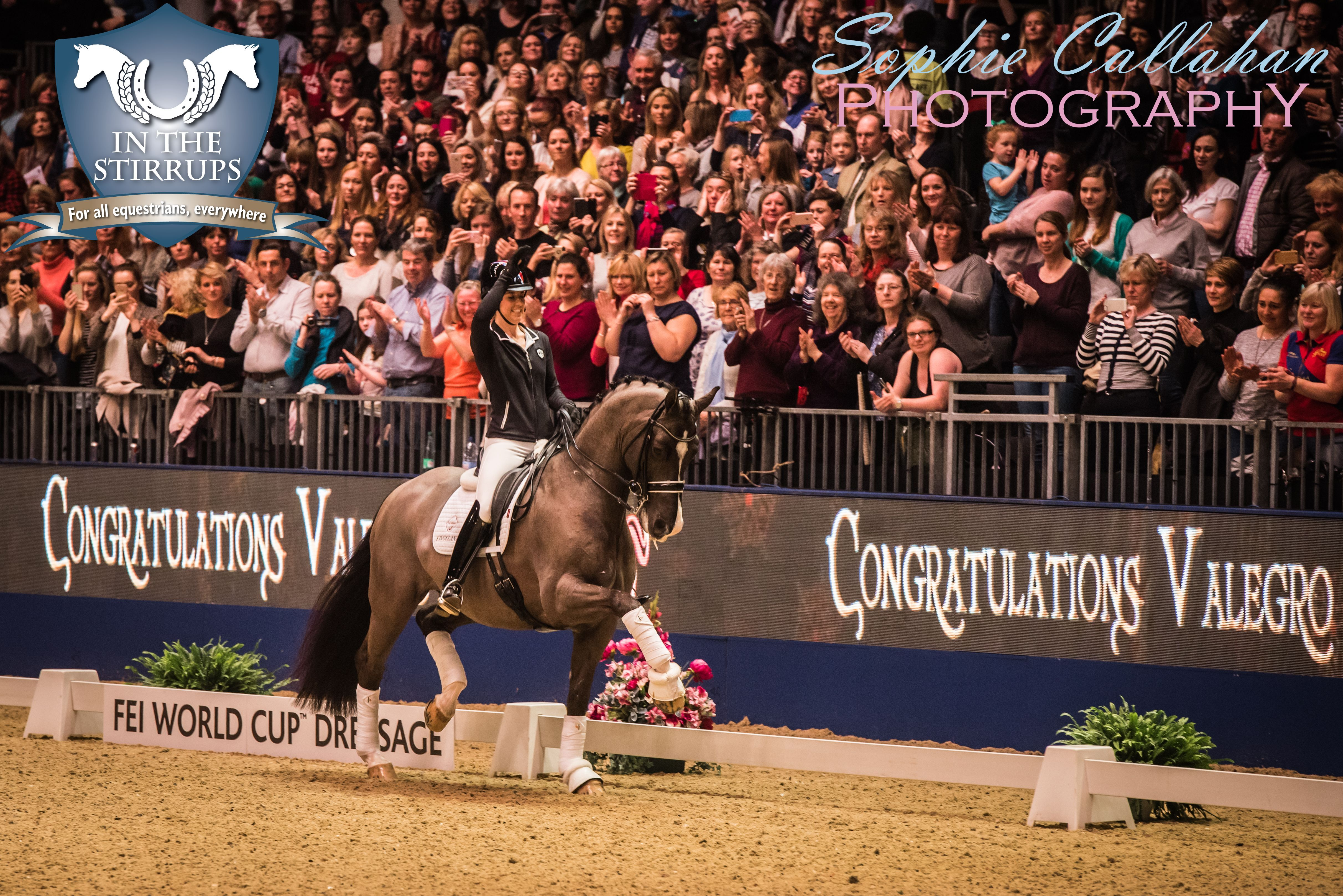 Valegro at Olympia, by Specialist UK Equine Portrait Photographer, Essex I equine photography equine blogger