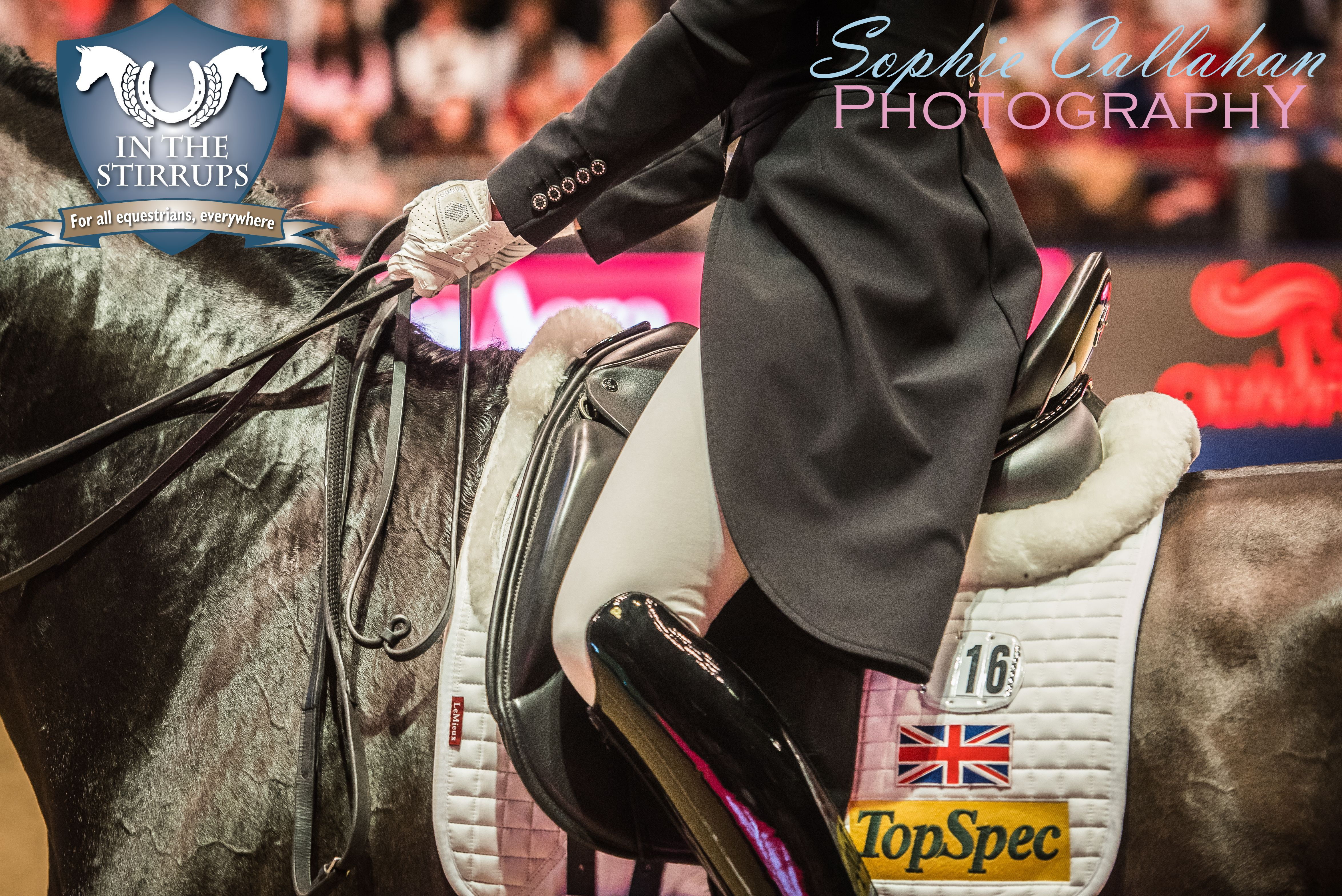 Dressage at Olympia 2016, by Specialist UK Equine Portrait Photographer, Essex I equine photography equine blogger