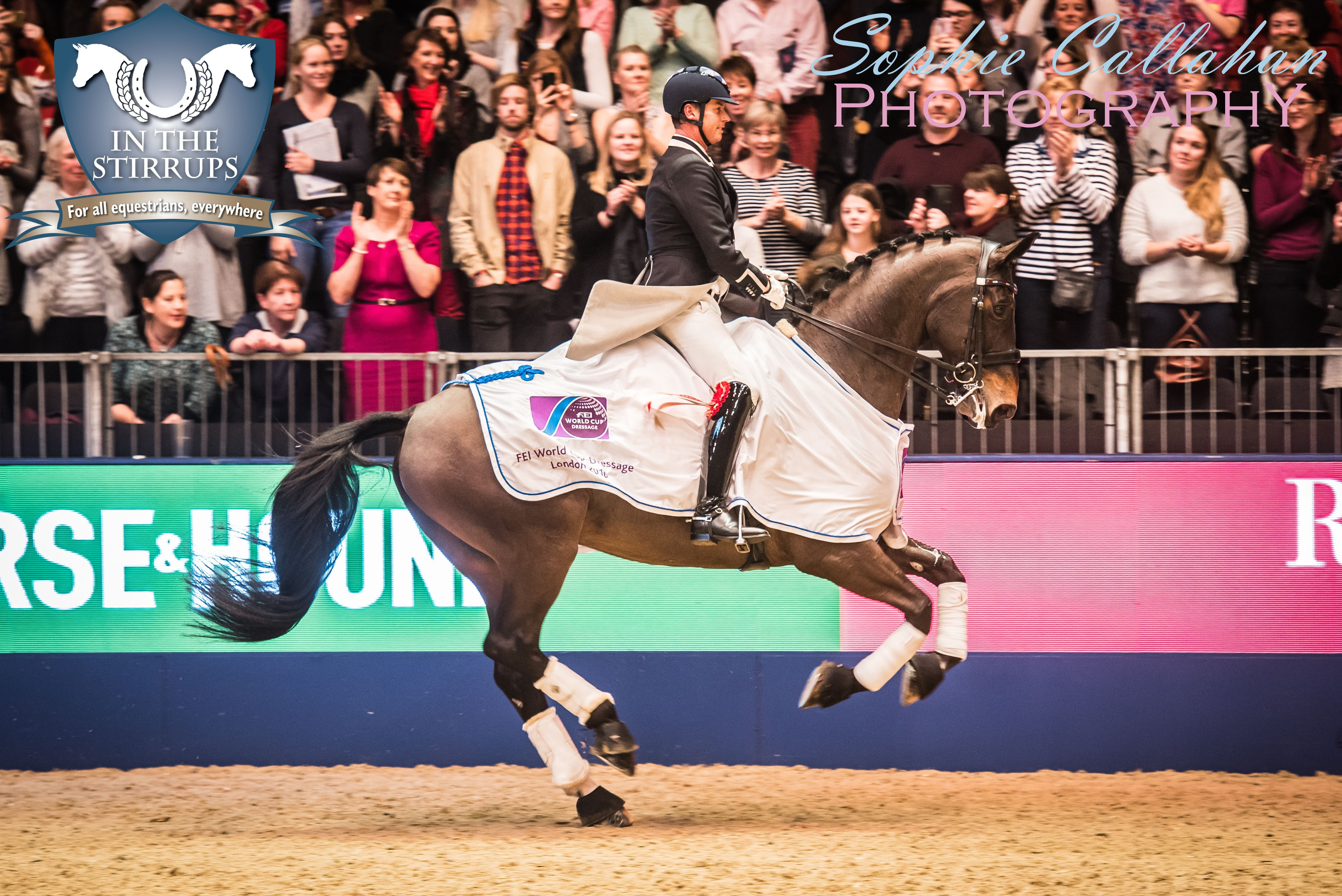 Carl Hester and Nip Tuck, Olympia, by Specialist UK Equine Portrait Photographer, Essex I equine photography equine blogger