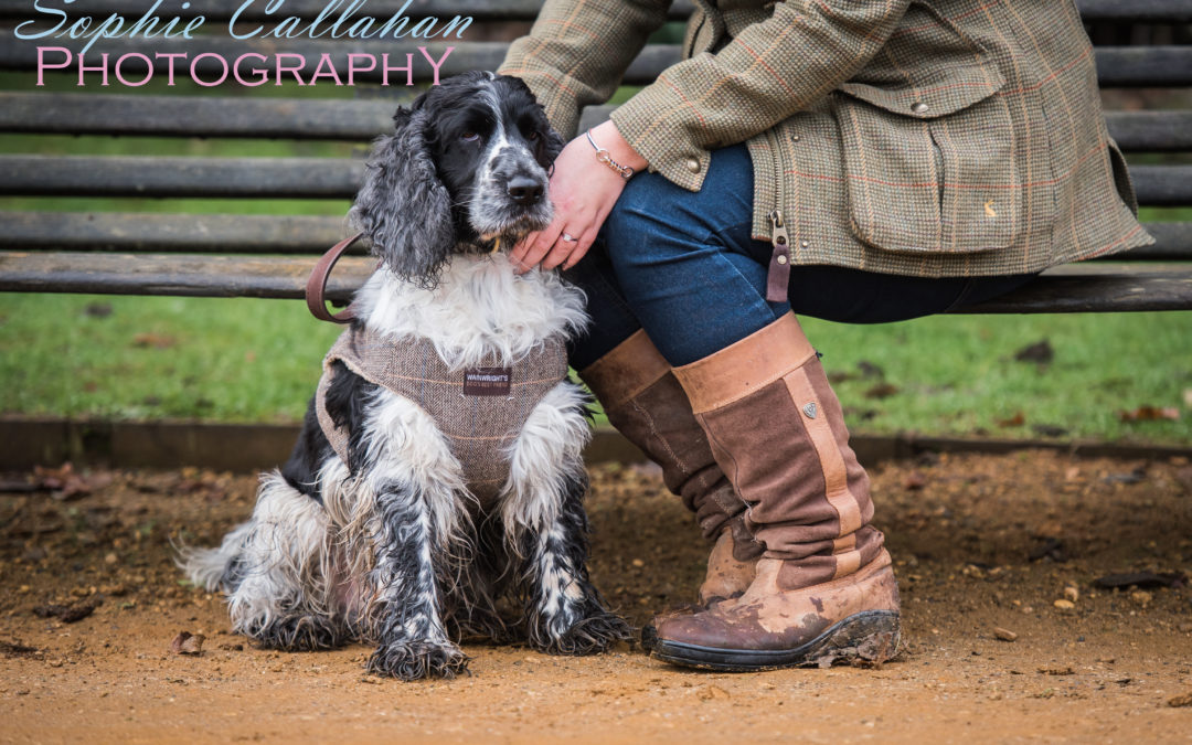 Why I Love My Ariat Windermere Boots
