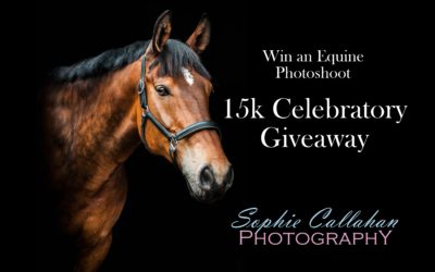 15K Celebratory Giveaway – Win an Equine Photoshoot