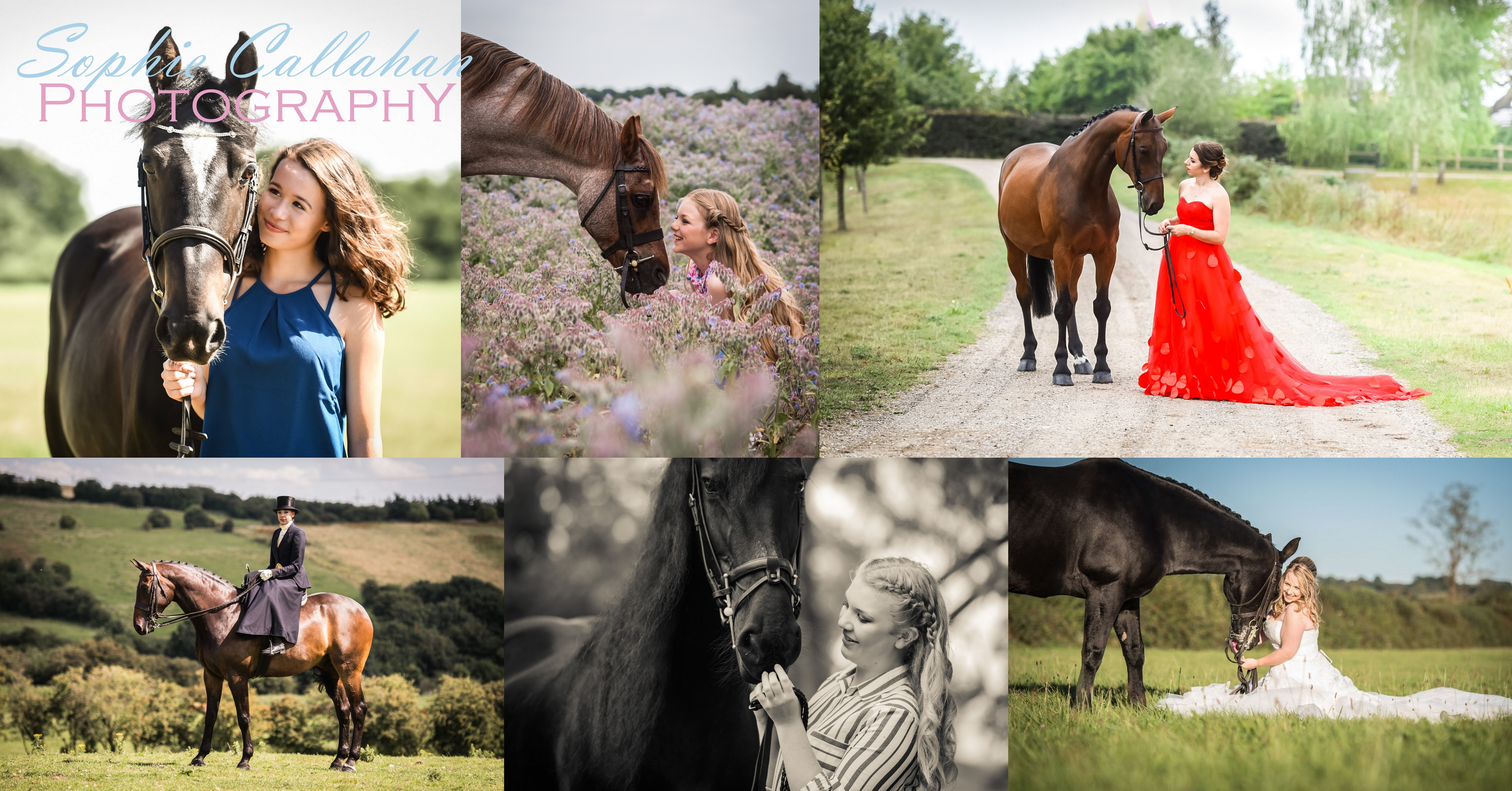 2017 Equine Photoshoot Waiting List, Sophie Callahan Photography