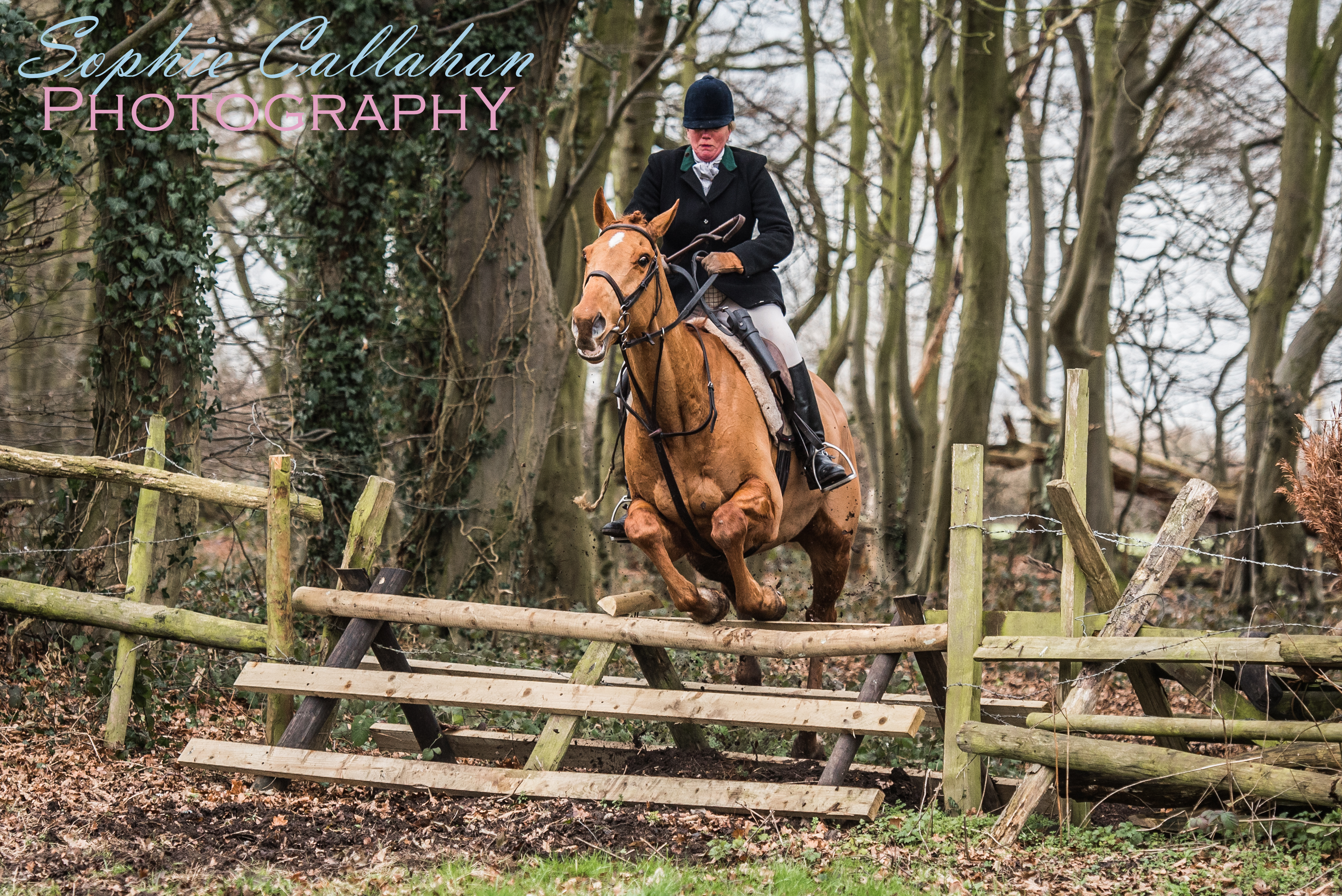 Essex Farmers & Union Hunt, Specialist UK Equine Portrait Photographer, Essex I via sophiecallahanblog.com I #equinephotography #photography #equineblogger