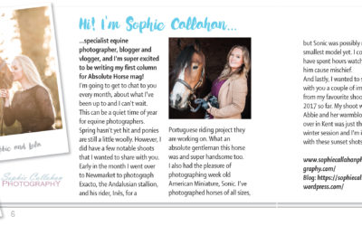 I'm a Magazine Columnist – With Absolute Horse Magazine