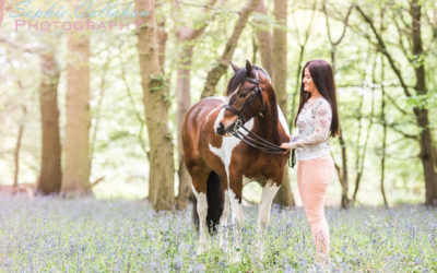 Sami, Duke & Joe – Equine Photography, Essex