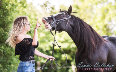 Kally, Honey, Candy & Perry – Equine Photography, Surrey