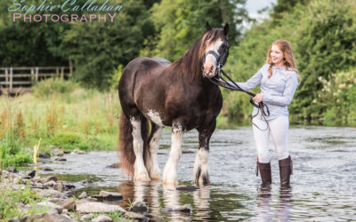 Jo, Thomas, Kit, Haarlie, Dougie, Beau & Bumble – Equine Photography, Cumbria