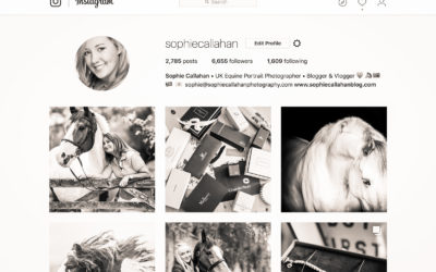 What is ColorKuler and How Can It Up Your Instagram Game? – FYI FRIDAY