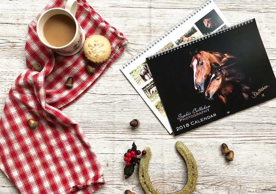 My 2018 Equine Calendar & Brand New 'This Princess Wears Boots' Print