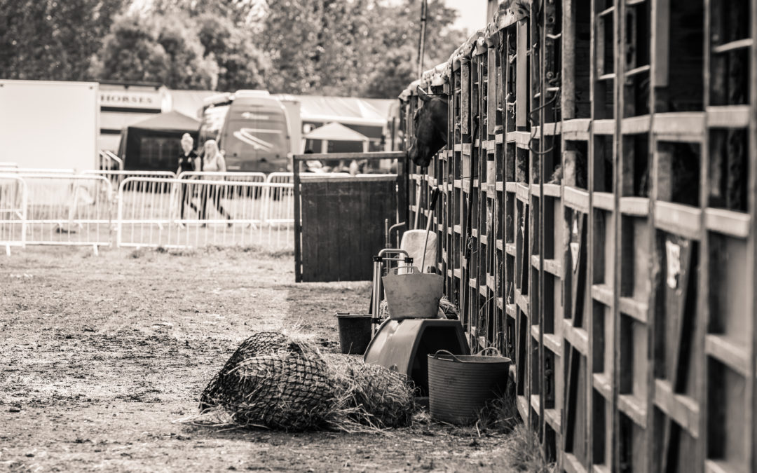 20 Smartphone Apps That Help Me Run My Equine Business