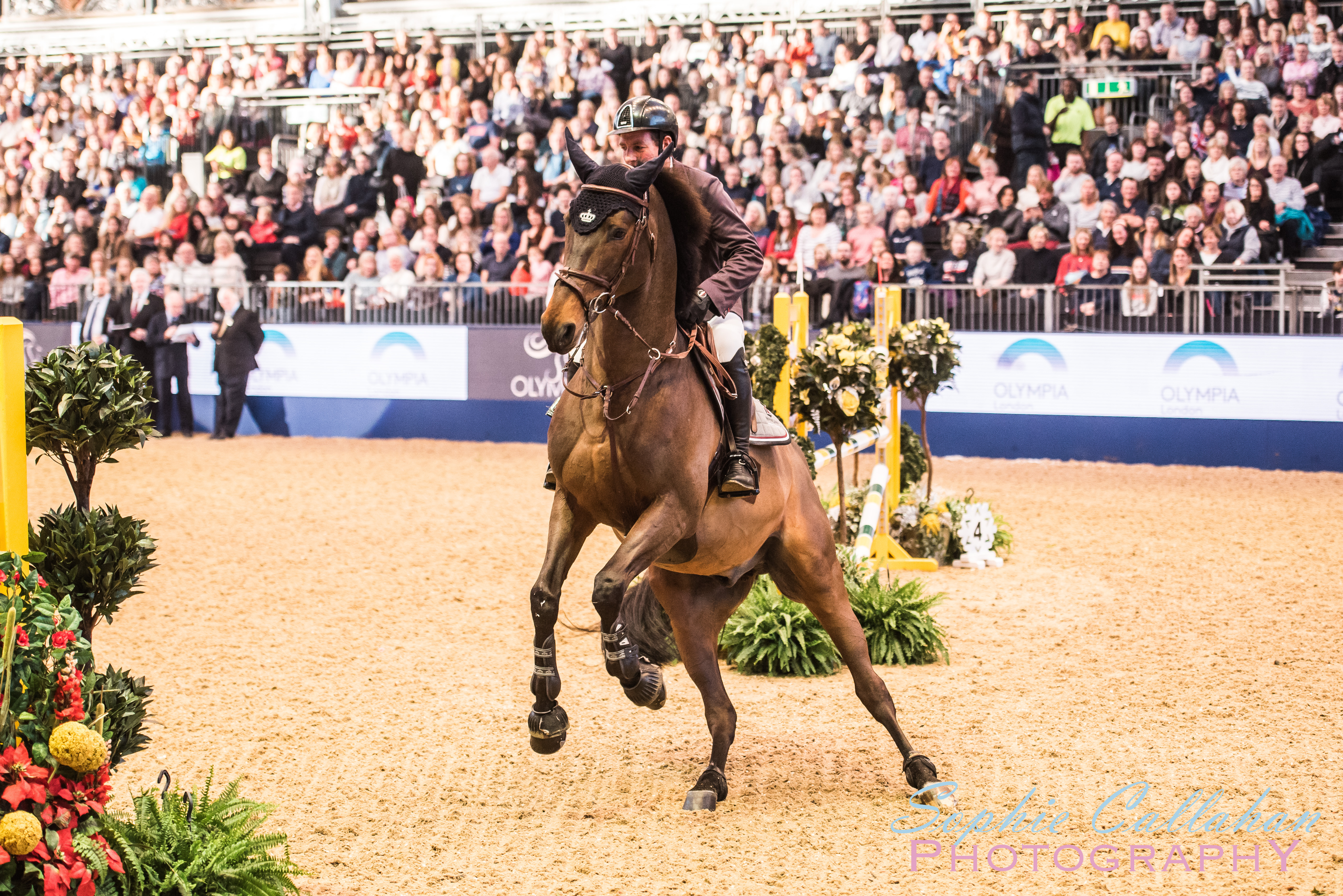 Olympia, London International Horse Show 2017 - Equine and Country Lifestyle Blogger I via sophiecallahanblog.com I #lifestyleblogger #photography #countrylife