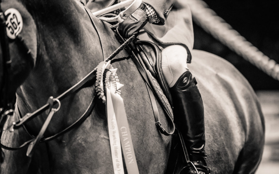 The Peaks & Troughs of Life as an Equestrian 'Mumpreneur'