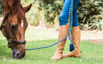 You Know You're Horsey When…